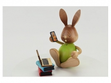 Kuhnert - Stupsi bunny homeschool with laptop (with video)