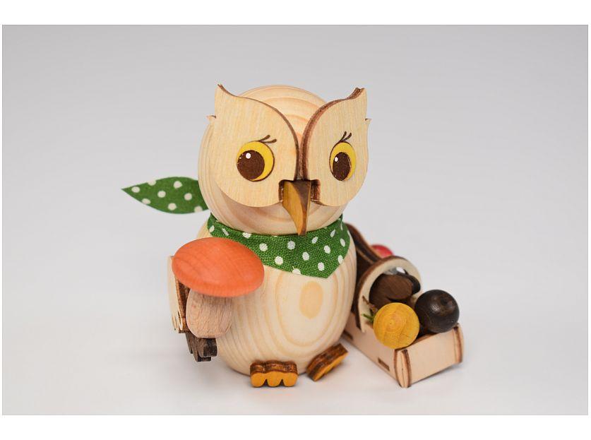 Kuhnert - mini owl mushroom hunter (with video)