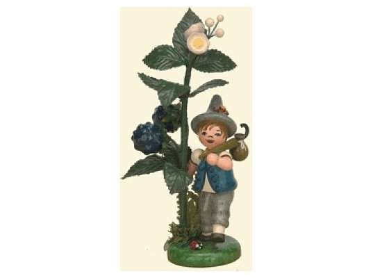 Hubrig - Autumn child blackberry