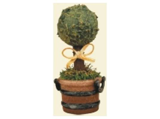 Hubrig - Miniature boxwood (3 pieces)